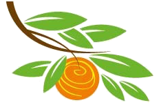 grove-gourmet-logo-only-transparent-png